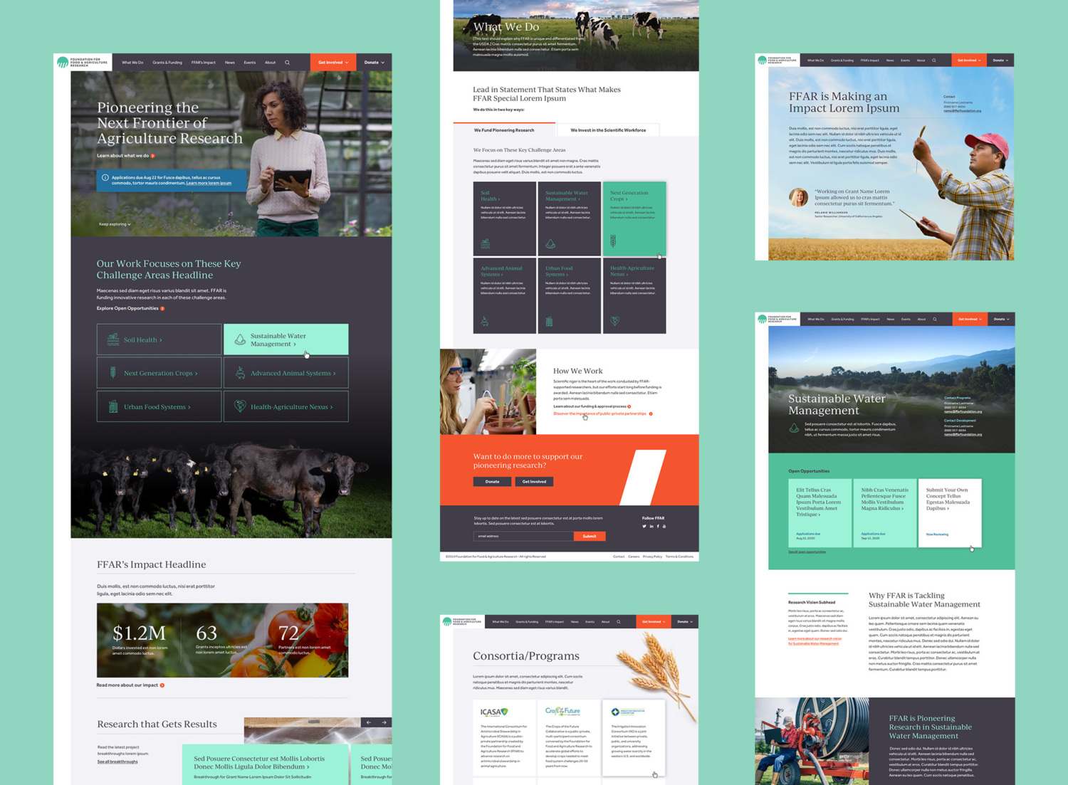 A collage of screen shots from the new website that Teal Media created for the nonprofit organization FFAR.